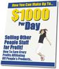 Thumbnail Make A $1,000 Per Day - MRR